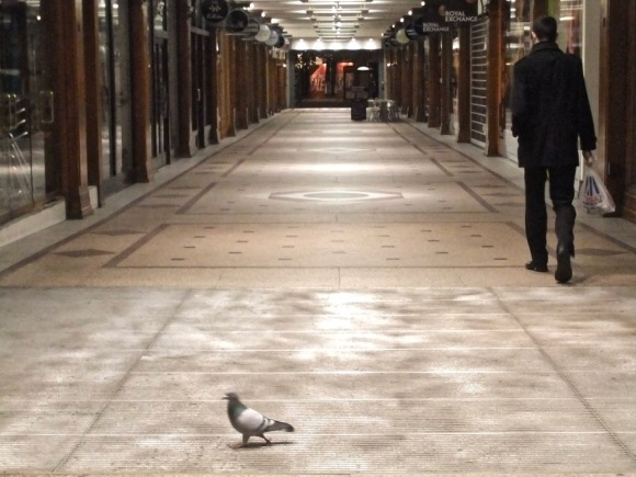Arcade with pigeon, 10/1/12