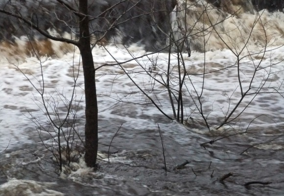 High water, 3/1/12