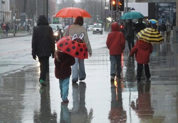 A very rainy day, 20/1/12