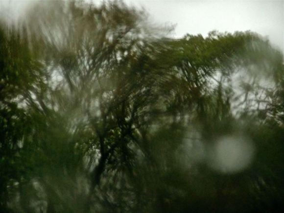 More rain, 29/4/12
