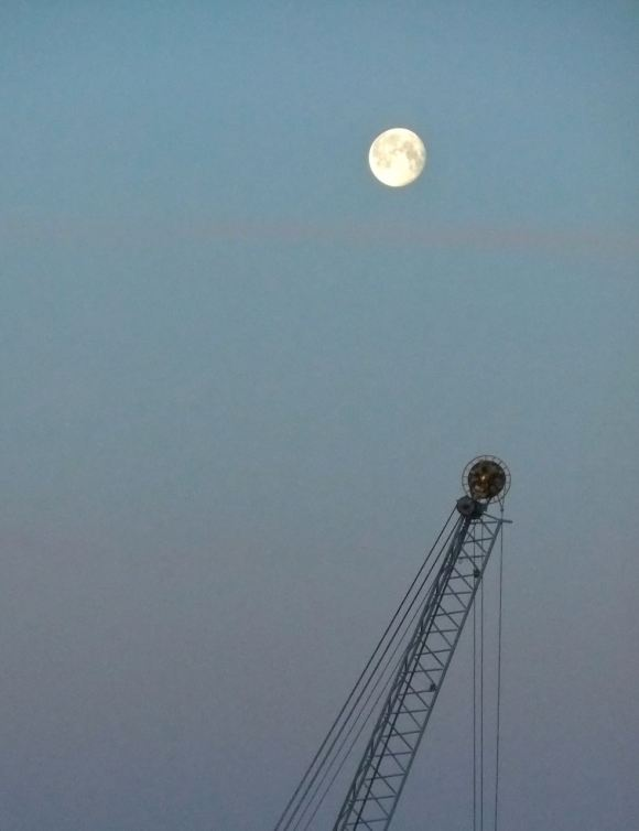 Moon and crane, 6/6/12