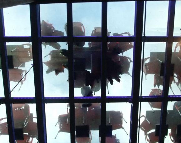 Transparent floor, 1/6/12