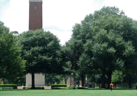 University of Alabama, 16/7/12