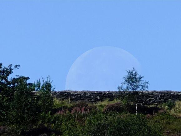 Setting moon, 5/9/12