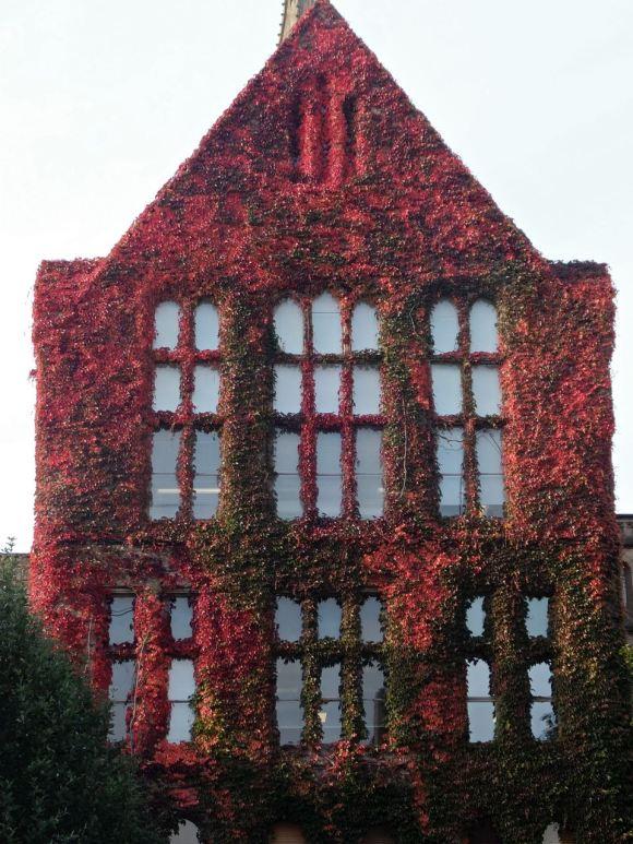 Beyer building, 8/10/12