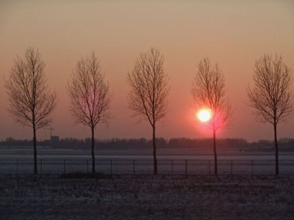 Winter at Schiphol, 16/1/13
