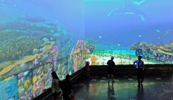 Digital Barrier Reef, 1/2/13