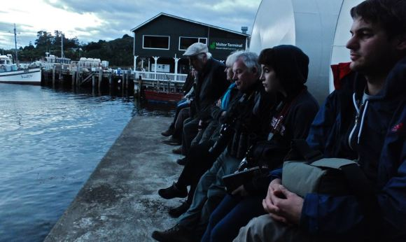 Waiting for penguins, 20/2/13