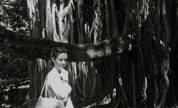 Clare and Banyan tree, 25/3/13