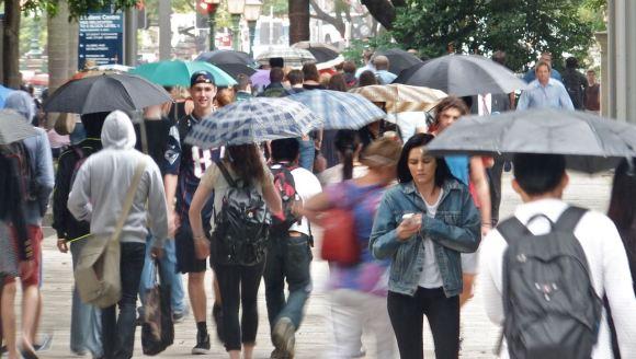 Umbrellas, 20/3/13