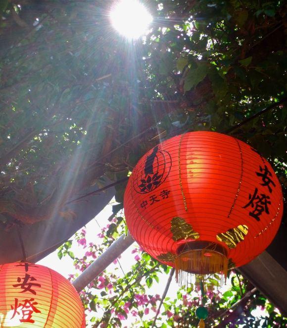 Buddha lanterns, 4/5/13