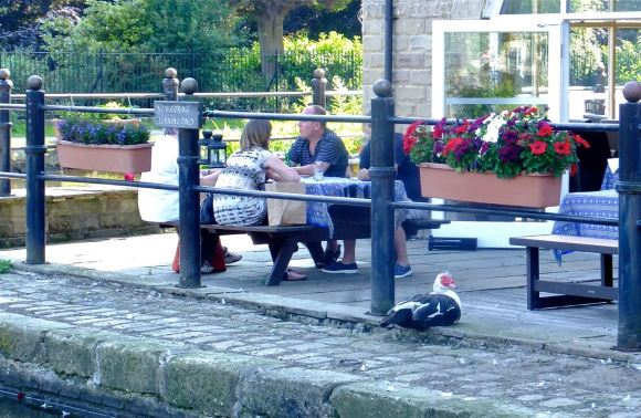 By the canal, 7/7/13