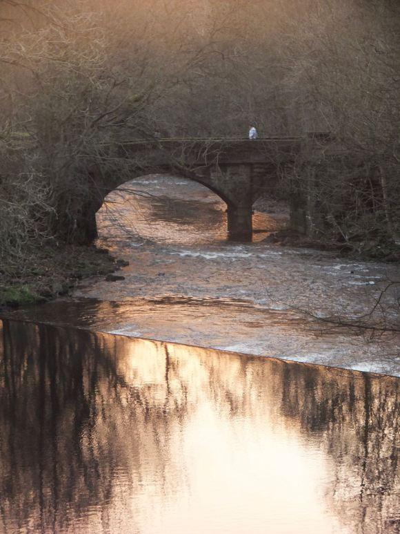 River Calder, 10/12/13