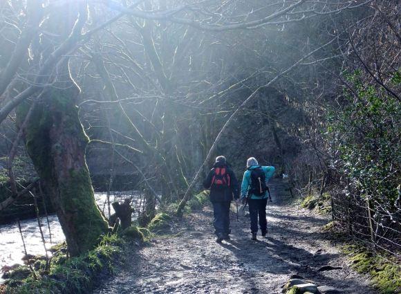 Riverside path, 16/2/14