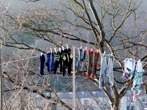 Washing line, 28/2/14