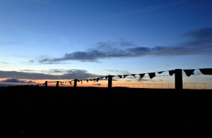 Cragg Vale bunting, 7/7/14