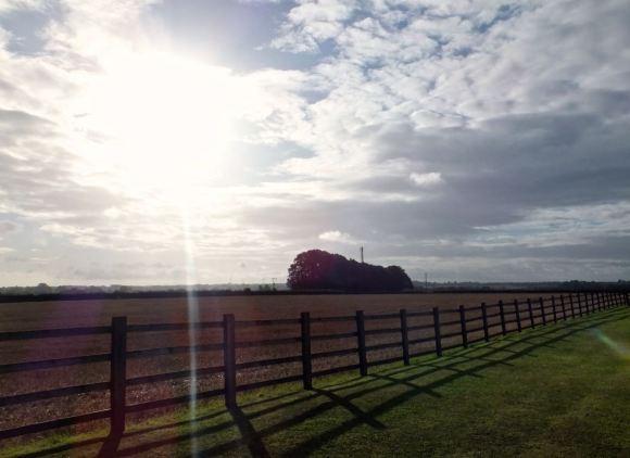 Countryside morning, 29/8/14