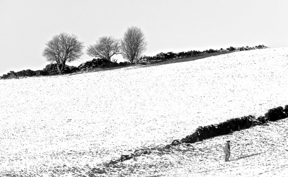 In the snow, 28/12/14