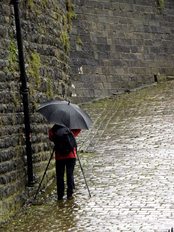 Umbrella photographer, 12/4/15