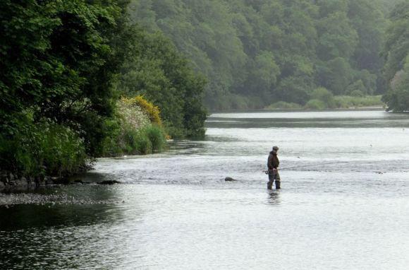 River Dee, 24/6/15