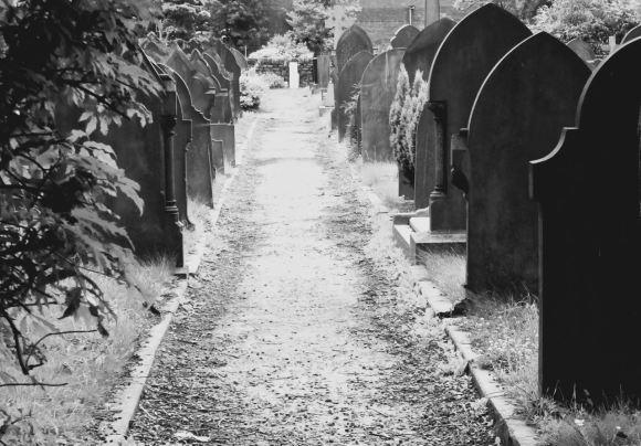 Graveyard, 11/7/15