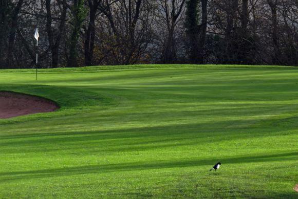 Golf course, 9/12/15