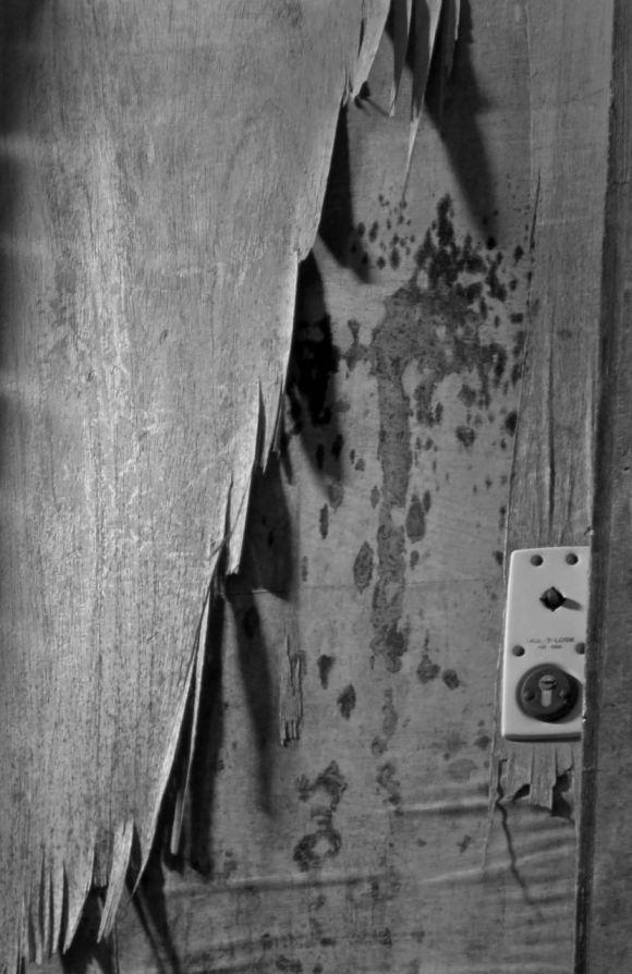Peeling door, 19/12/15