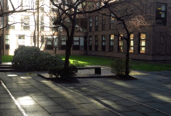 My courtyard, 3/2/16