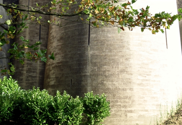 Arundel castle walls, 23/10/16