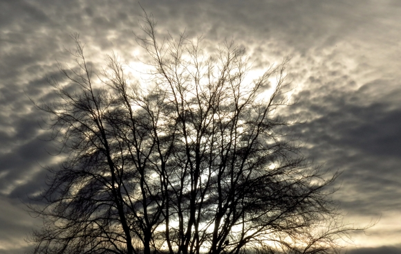 Winter sky, 7/12/16