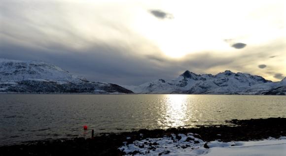 Skulsfjord, 8/3/17