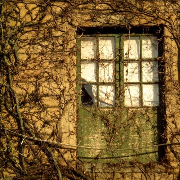 Mill window, 3/4/17