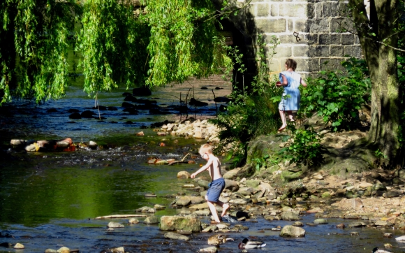 River frolic, 23/5/17