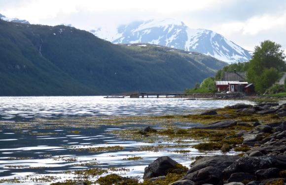 Aursfjord, 18/6/17