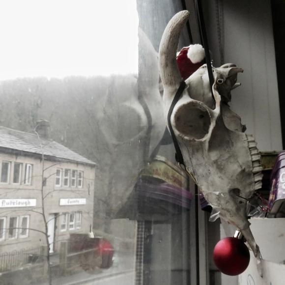 Rudolf, 20/12/17