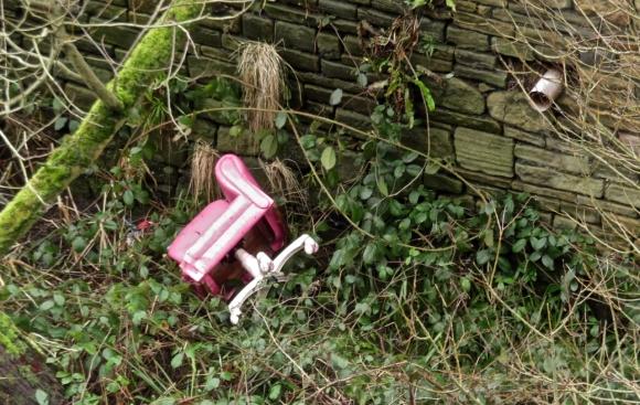 Pink litter, 22/1/18