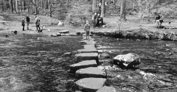 Stepping stones, 8/4/18