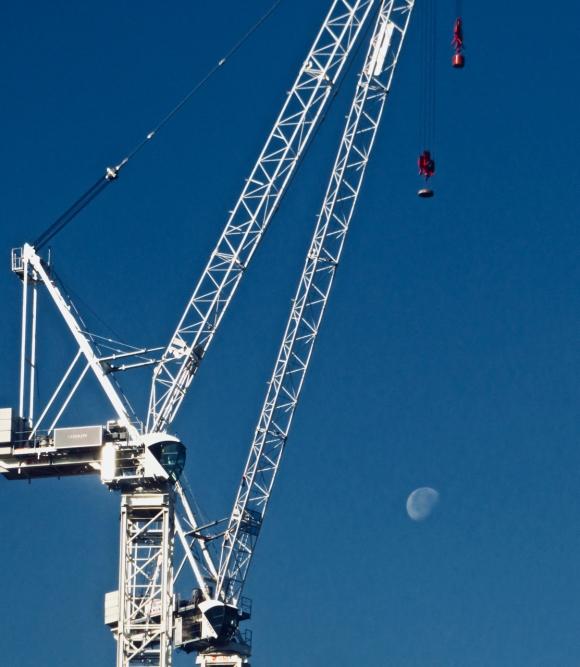 Crane and moon, 3/7/18