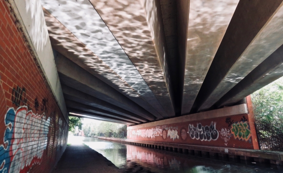 Bridgewater Canal, 31/8/18