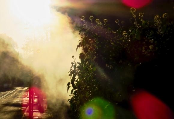 Mysterious mist, 29/10/18