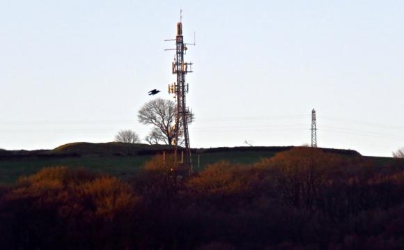 Mobile mast, 17/1/19