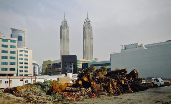 Dubai palm graveyard, 25/3/19