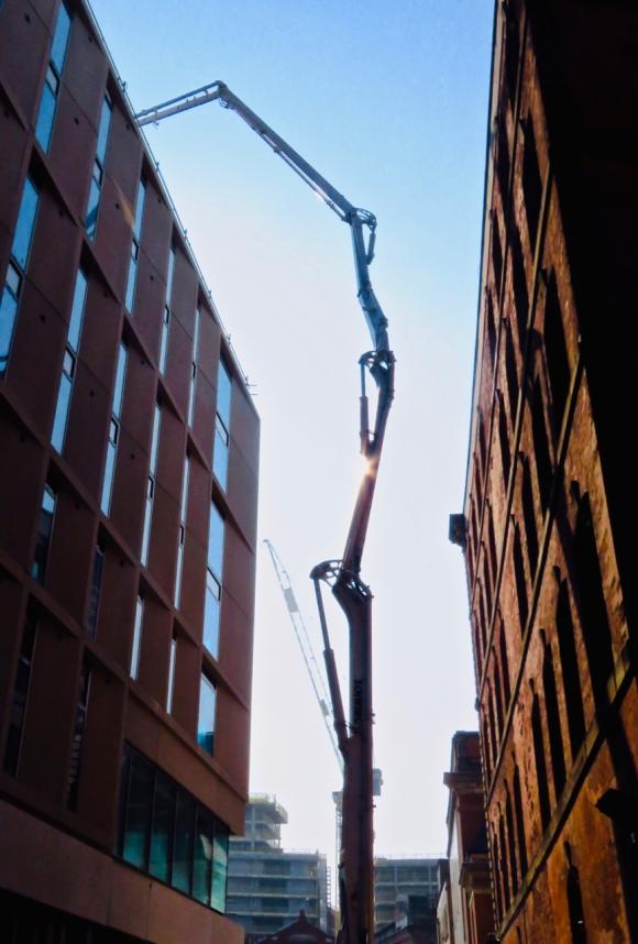 Spidery crane, 17/4/19