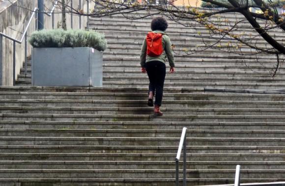 Steps, 2/5/19