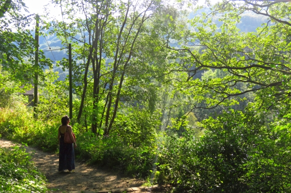 Clare in woods, 25/8/19