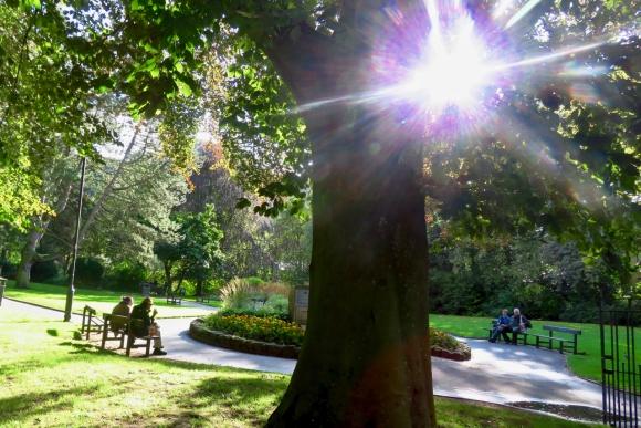 Memorial gardens, 1/9/19