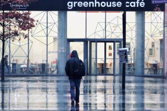 Campus Greenhouse 12/11/19