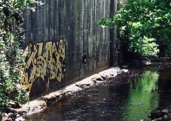 Hebden Water tag, 22/5/20