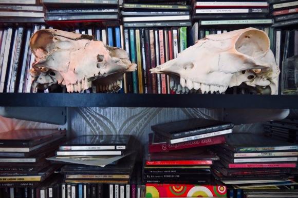 CD shelves, 28/6/20