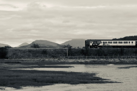 Train at Ravenglass, 24/7/20